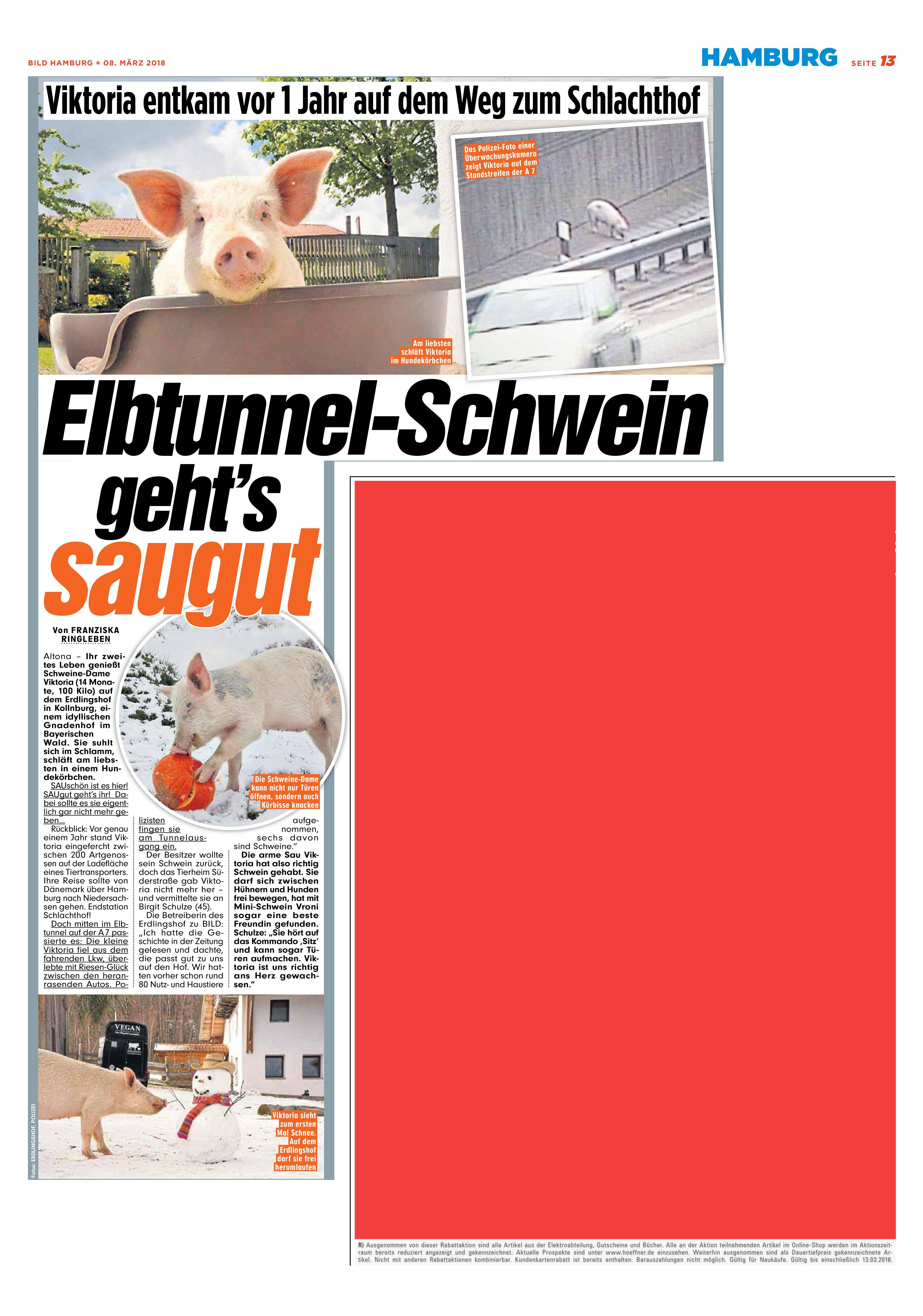 Artikel In Bild Hamburg Vom 08 März 2018 Erdlingshof