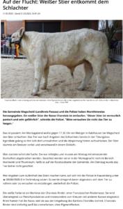 Artikel in der Passauer Neuen Presse vom 31.03.2020