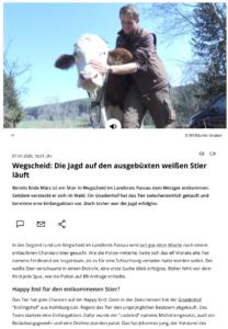Bericht über die Suche nach Ferdinand vom 07.04.2020 auf br24.de