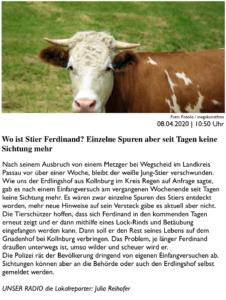 PASSAU24 fragt in einem Zeitungsartikel, wo Stier Ferdinand sich aufhält und berichtet über unsere Bemühungen
