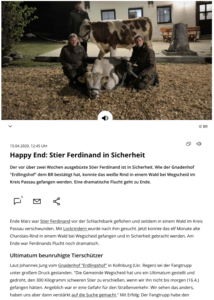 Bericht Happy End - Stier Ferdinand in Sicherheit