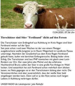Bericht über die Herausforderungen der Ferdinand-Suche am morgen des 15. April 2020 auf PASSAU24