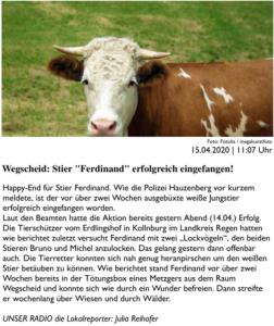 Bericht über den Erfolg der Ferdinand-Rettung auf PASSAU24.de